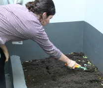 Community Center Gardening