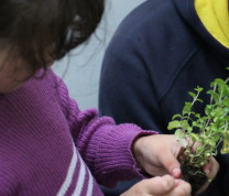 Community Center Gardening Kids