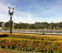 Curitiba View