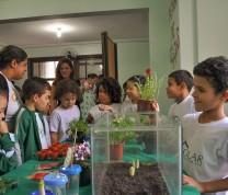 Educational Center Volunteer Planting