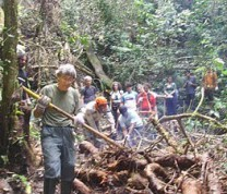 Environmental Conservation Jungle Trail