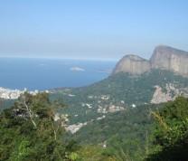 Environmental Conservation Rio de Janeiro View