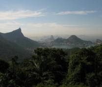 Environmental Conservation View Rio de Janeiro