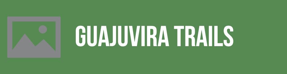 guajuvira